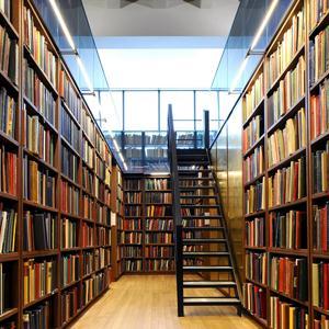 Библиотеки Бошняково
