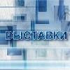Выставки в Бошняково